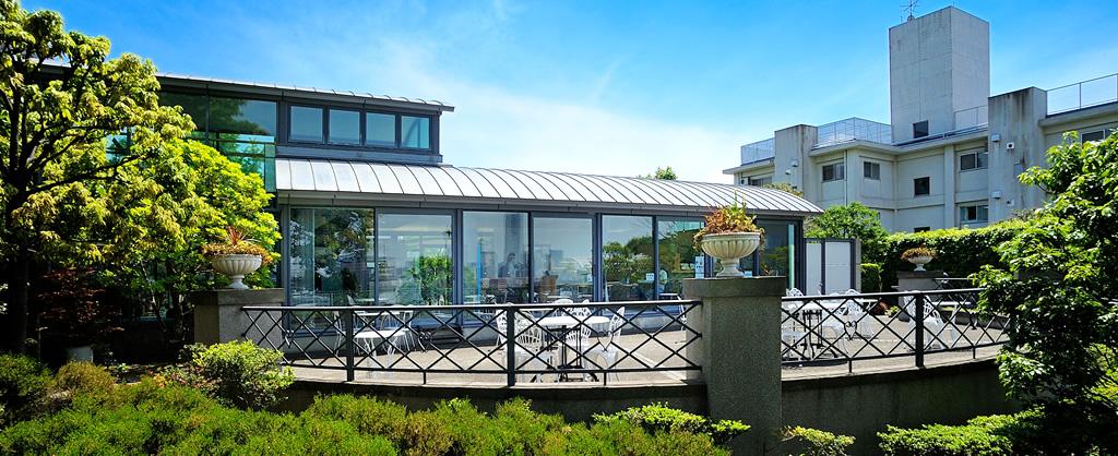 Bluff Garden Cafe